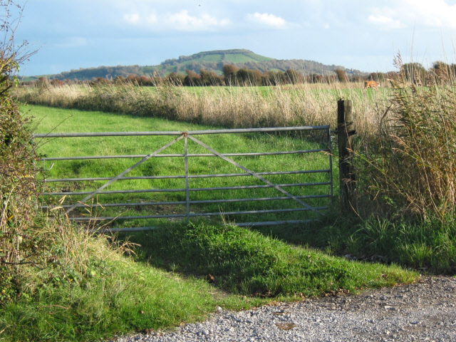 Field entrance  on Red Road, Berrow