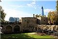 TQ3380 : Tower of London by Christine Matthews