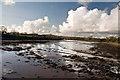 SN0403 : River Carew by Mick Lobb