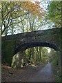 SX5260 : Bridge over the Plym Valley Trail by Derek Harper