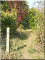 TQ3557 : Public footpath near Woldingham by Malc McDonald