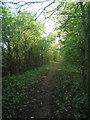 TL4550 : Footpath north of Sainsfoins Farm by Given Up