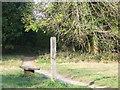 TQ3558 : Wooden bench near Warlingham by Malc McDonald
