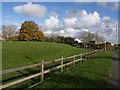 SX5160 : Grass bank, Estover by Derek Harper