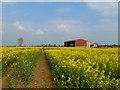SU2989 : Farmland, Uffington by Andrew Smith