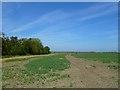 SU3992 : Farmland, West Hanney by Andrew Smith