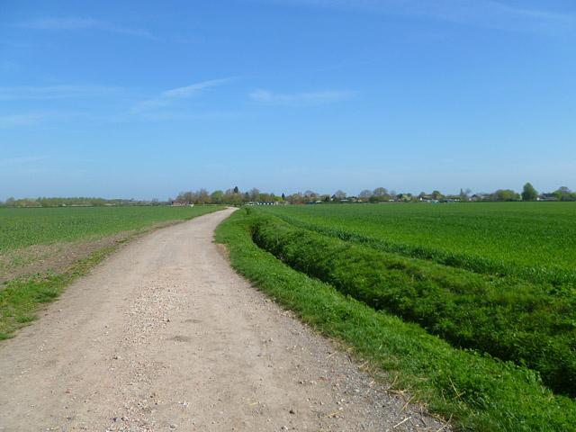 Track and farmland, West Hanney