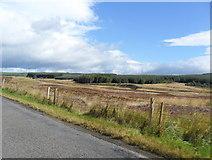 NN9040 : Heathland and forestry in Glen Cochill by nick macneill