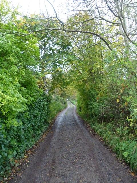 The Waterless Road