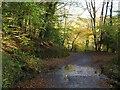 SX5258 : Plymbridge Road by Derek Harper