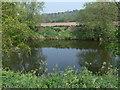 SO7391 : River Severn near Quatford by Mat Fascione