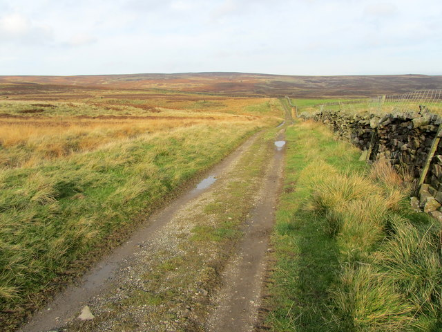 Track leading onto Middleton Moor Enclosure