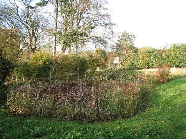 Glentworth village pond