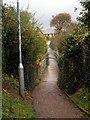 SZ5984 : Foxes Bridge by Chris McAuley
