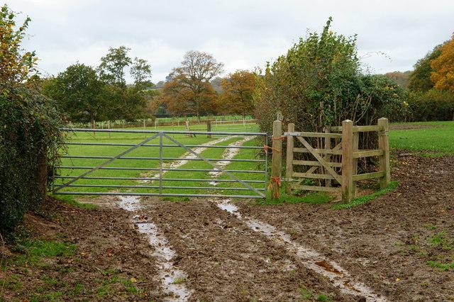Kissing Gate Near Little Oddynes, Sussex