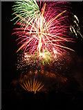 SE3237 : Roundhay Park Fireworks, 4 Nov 2011 by Rich Tea