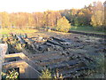 NS7265 : Iron works remains at Summerlee by M J Richardson