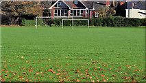 J3774 : Playing fields, Belfast (1) by Albert Bridge