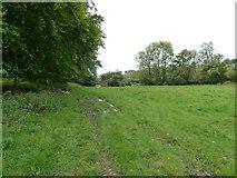SU6017 : South Downs Society Green Travel Walks Week (158) by Basher Eyre