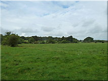 SU6017 : South Downs Society Green Travel Walks Week (159) by Basher Eyre
