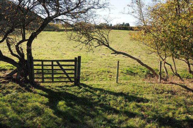 Gate on a footpath near Highwood by Philip Halling