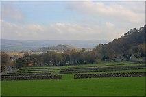 SK1482 : Goosehill Fields by Mick Garratt