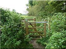 SU6017 : South Downs Society Green Travel Walks Week (171) by Basher Eyre