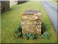 ST4385 : Late winter daffodils at the entrance road to Lower Grange Farm south of Magor by Jaggery