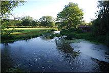 TG2105 : River Yare, Keswick Mill by N Chadwick