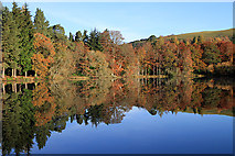 NT4227 : The Upper Loch at Bowhill by Walter Baxter