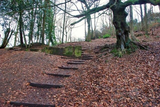 Yeovil: Pathway into Ninesprings
