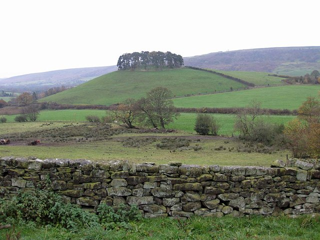 View to Hill Plantation, Rosedale
