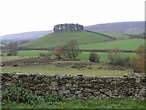 SE7296 : View to Hill Plantation, Rosedale by Pauline E