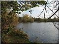 SJ6871 : Fishing lake South of Davenham Road by Dr Duncan Pepper