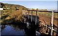 J4099 : Railway bridge, Glynn by Albert Bridge