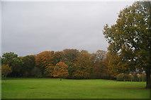 SD6911 : Autumn trees at Moss Bank Park by Bill Boaden