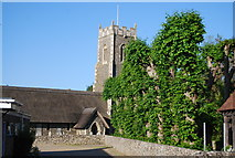 TG2005 : Church of St Andrew, Eaton by N Chadwick