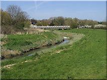 TQ5203 : River Cuckmere by Shaun Ferguson