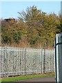 TL8465 : Mystery camera on roadsign by John Goldsmith