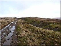 NY8235 : Grasshill Causeway by Oliver Dixon
