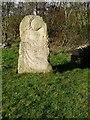 NY8629 : Sculptured stone in Forest-in-Teesdale by Oliver Dixon