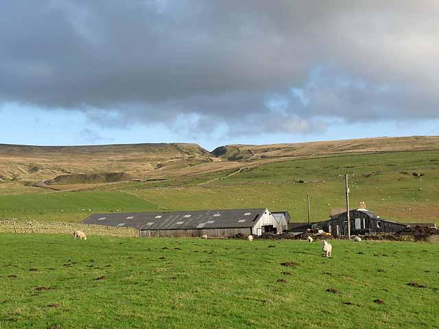 Field Head Farm