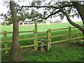 SJ6066 : Stile and footpath to Conygreaves Farm by Dr Duncan Pepper