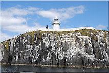 NU2135 : Cliffs below the lighthouse, Inner Farne by N Chadwick