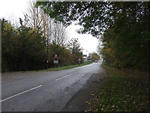 SK7964 : Road into Carlton on Trent by JThomas