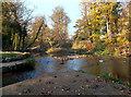 TQ1272 : Crane Park Island, Upstream End by Des Blenkinsopp