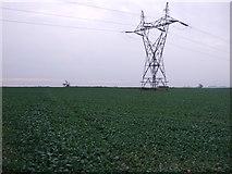 SK7369 : Farmland north of Egmanton by JThomas