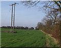 TF4672 : Electricity poles near B1196 by J.Hannan-Briggs