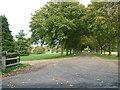 TL9860 : Clopton Green farm entrance avenue by John Goldsmith