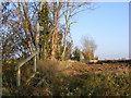 TM2170 : Footpath off Water Lane (U5606) by Adrian Cable